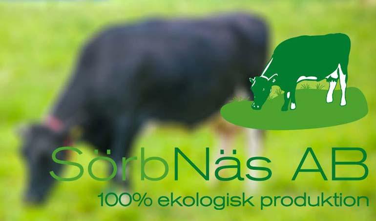 Logotyp Sörbnäs AB DCD REKLAMBYRÅ